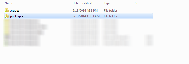 Packages Folder